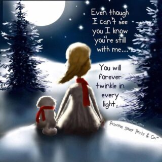 #grief #loss #childloss #holidays #christmaswithoutyou #loveneverdies #saytheirnames #grievingparents
